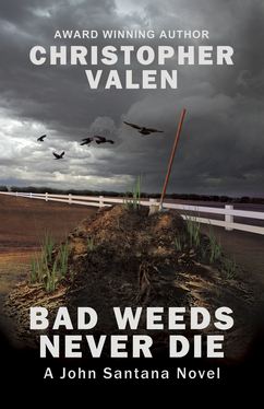 Bad Weeds Cover jpg